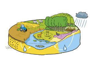 Raad voor de leefomgeving en infrastructuur
